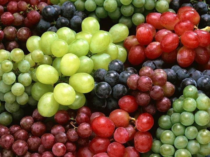 Ragam anggur