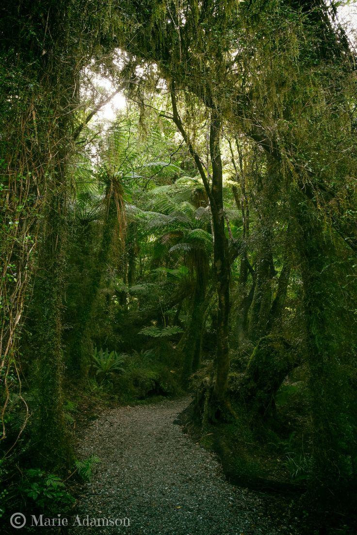 Hokitika Gorge, West Coast NZ