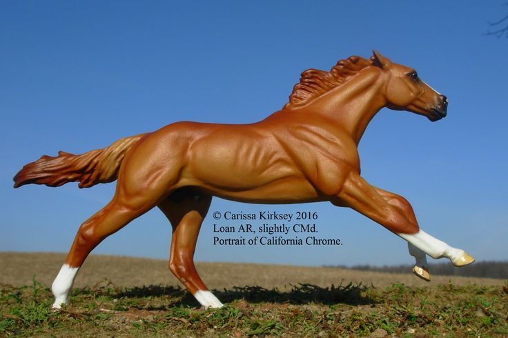 Cm Loan Ar To California Chrome By Carissa Kirksey 2016