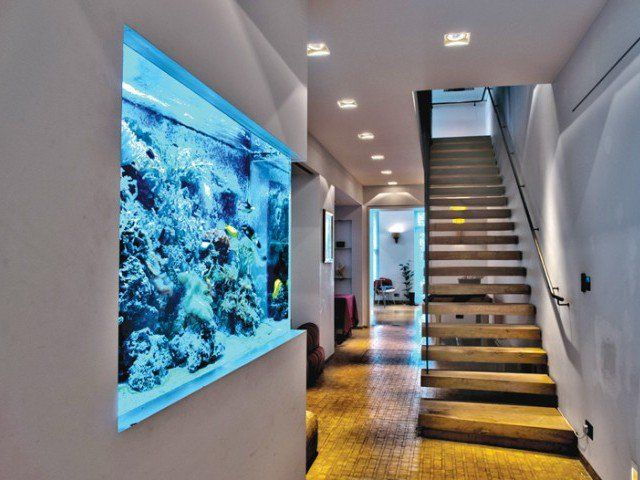 Besides installing in business premises we also provide the facility to install aquariums in hospitals and health care centres.