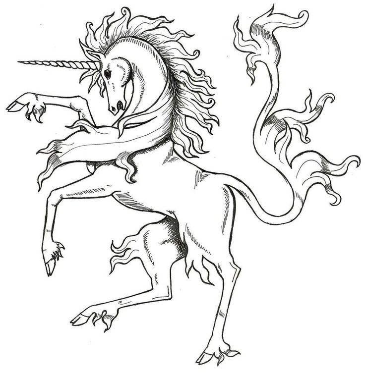 Medieval Unicorn by Tanasan on