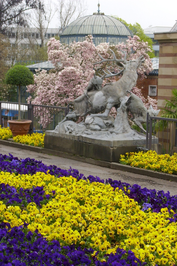 Wilhelma,Stuttgart Spring 2013
