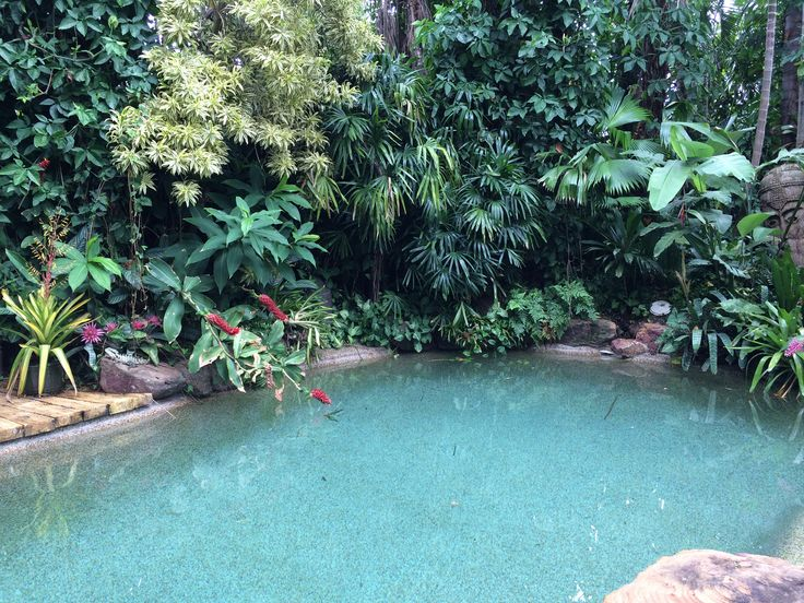 19 best dennis hundscheidt images on pinterest tropical for Garden pool dennis mcclung