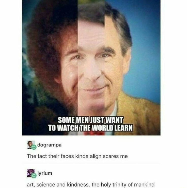 Someen Just Want To Watch The World Learn Bob Ross Bill Nye Mr Rogers Tumblr Funny Funny Memes Memes