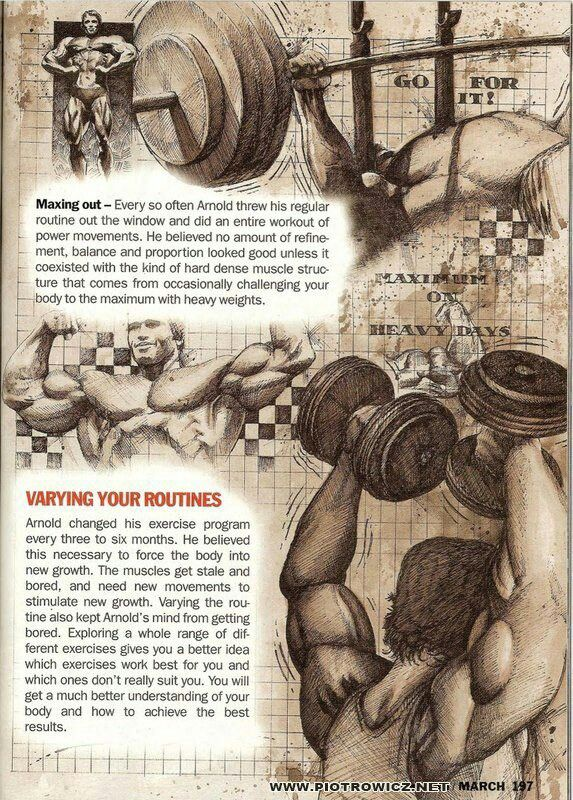 Arnold Schwarzenegger Bodybuilding Workouts Pdf | EOUA Blog