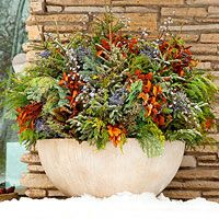 Use evergreen sprigs, colorful twigs, and dried perennials to create a winter wonderland in your containers.