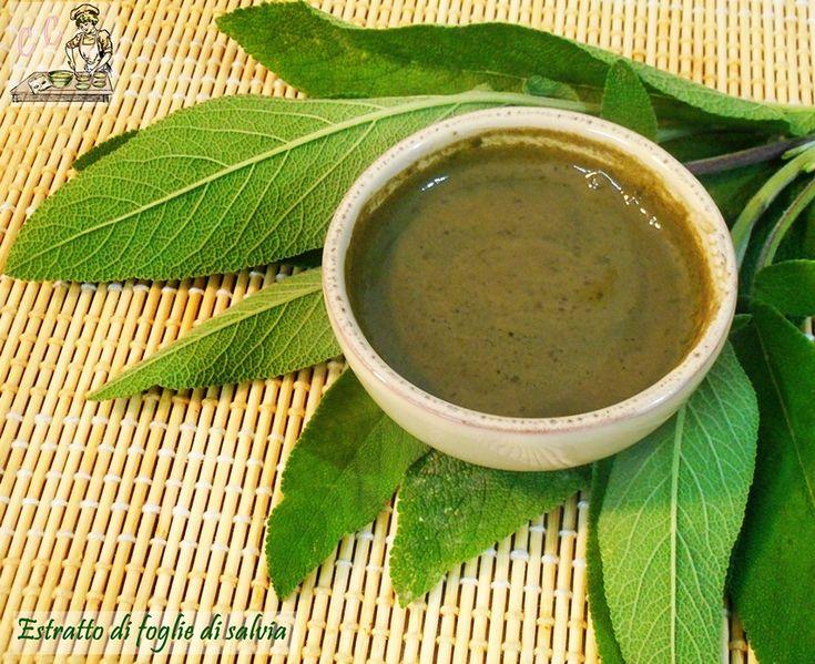 Estratto foglie di salvia una ricetta tutta salute utile per l'asma vampate di calore per menopausa problemi di ciclo mestruale ipersudorazione alitosi