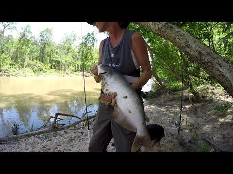 Bank Fishing For Blue Catfish - Secret 7 Tip - YouTube
