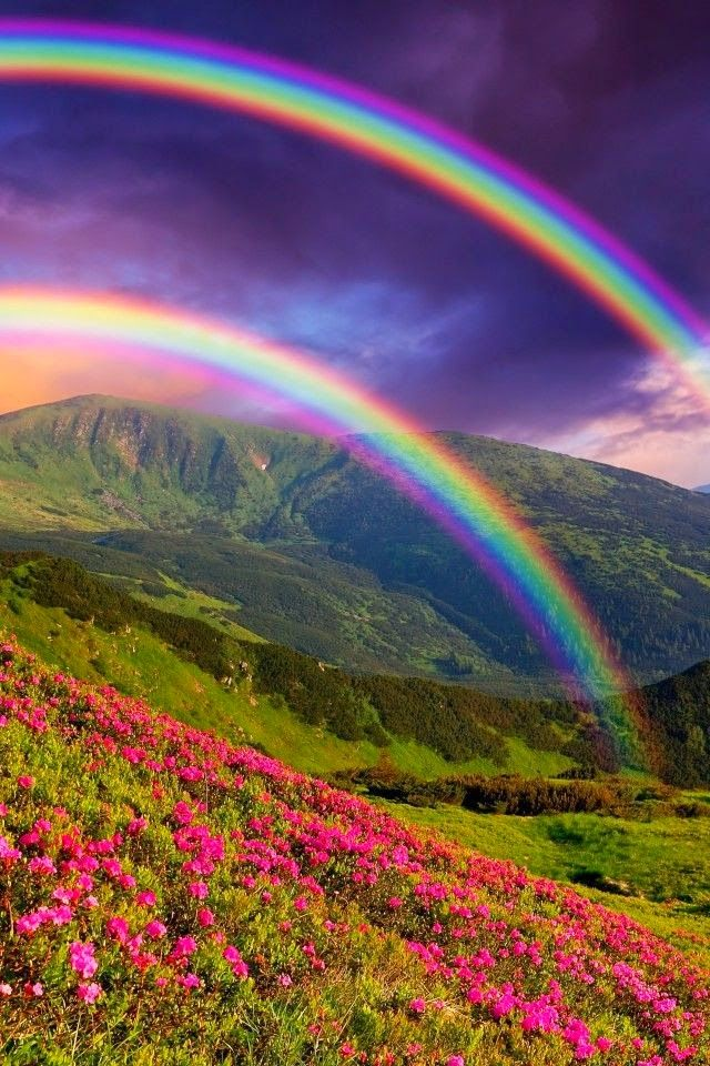"I think real rainbows are beautiful and wondrous. I think obvious fakes - like THIS - are ridiculous and stupid. (Update: The irony is killing me. This has become an extremely popular repin from my board. The thing is, people are pinning it to their ""Wonders of Nature"" boards. *head desk*)"