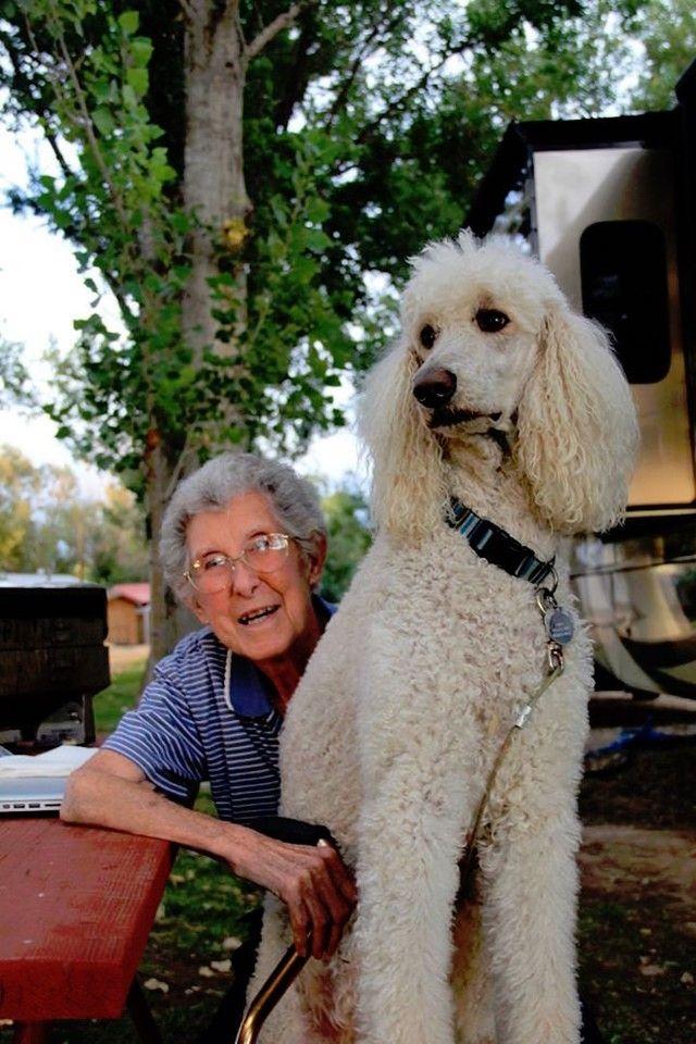В июле 2015 года 90-летняя американка по имени Норма потеряла мужа, а всего лишь через два дня у нее диагностировали рак. Врачи советовали женщ...