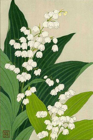 Lily of the Valley. SHODO KAWARAZAKI. JAPAN. 1954. Woodblock Print