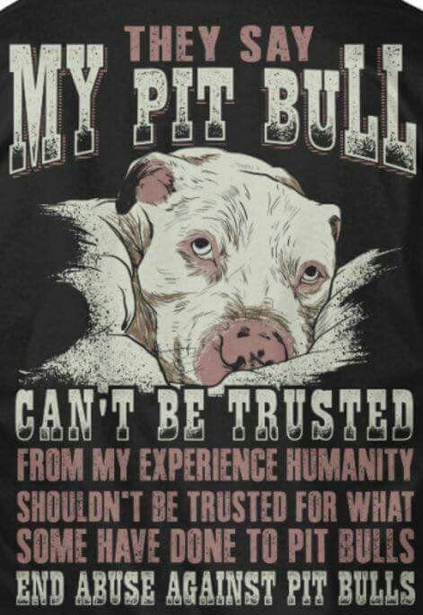 Pitbull truth