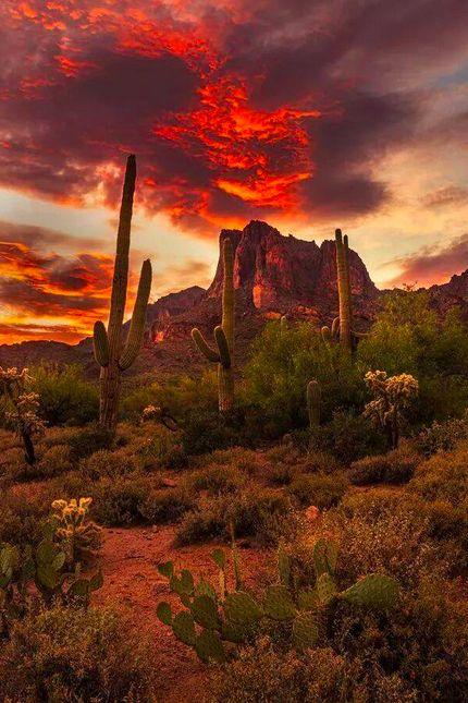 Friday Fotos: Arizona's Majestic Peaks and Valleys www.travel4corners.us/blog