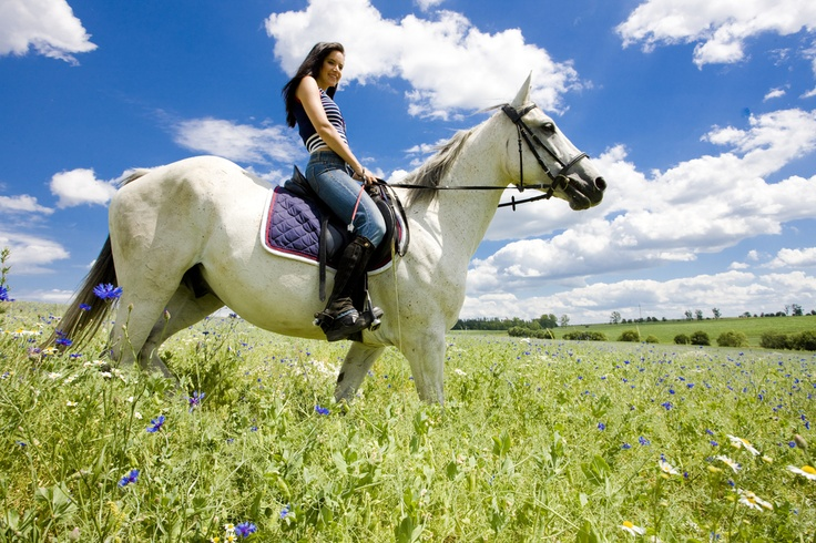 Saddle Up in South Dallas! The Great Trinity Forest Gateway and Horse Trails opened Saturday