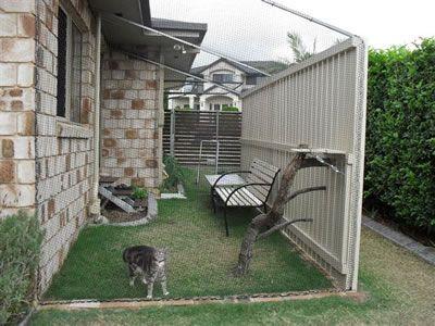 61 Best Cat Enclosures Catios Diy Images On Pinterest