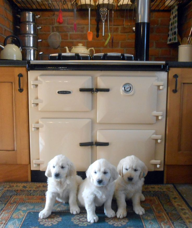 206 Best Images About In The Kitchen: Stoves, Cookers And