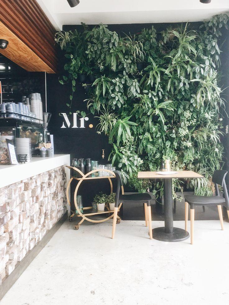 Mr Cafe - Balmain, Sydney