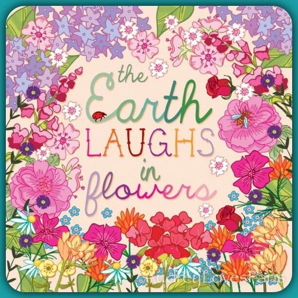 Beautiful Madam In Beautiful Garden Quotes: 647 Best Quotes ~ Flowers Images On Pinterest
