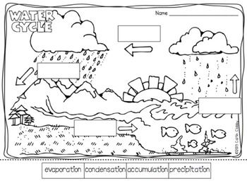Label it: Water Cycle