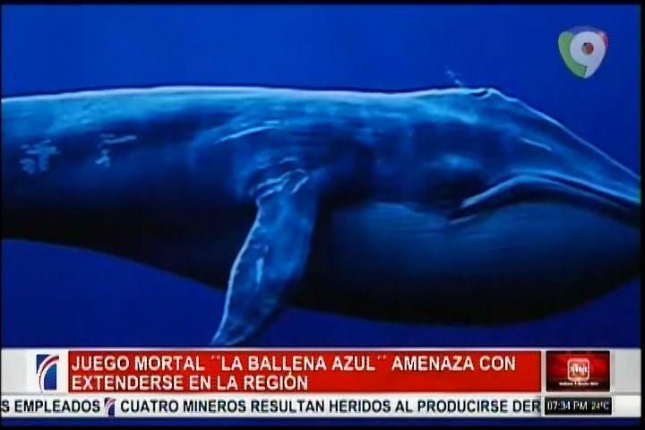 """Un Juego Mortal Llamado """"La Ballena Azul"""" Amenaza Con Extenderse En La Región"""