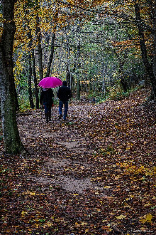 Santa Fe de Montseny, un clásico del otoño