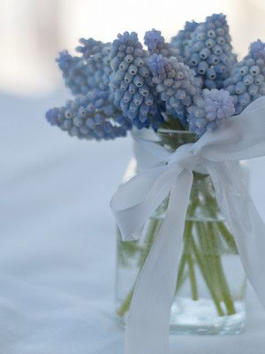 #flowers #blue #ribbon #white
