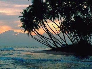 Coffret Platinium - Séjour de 9 jours au Sri Lanka