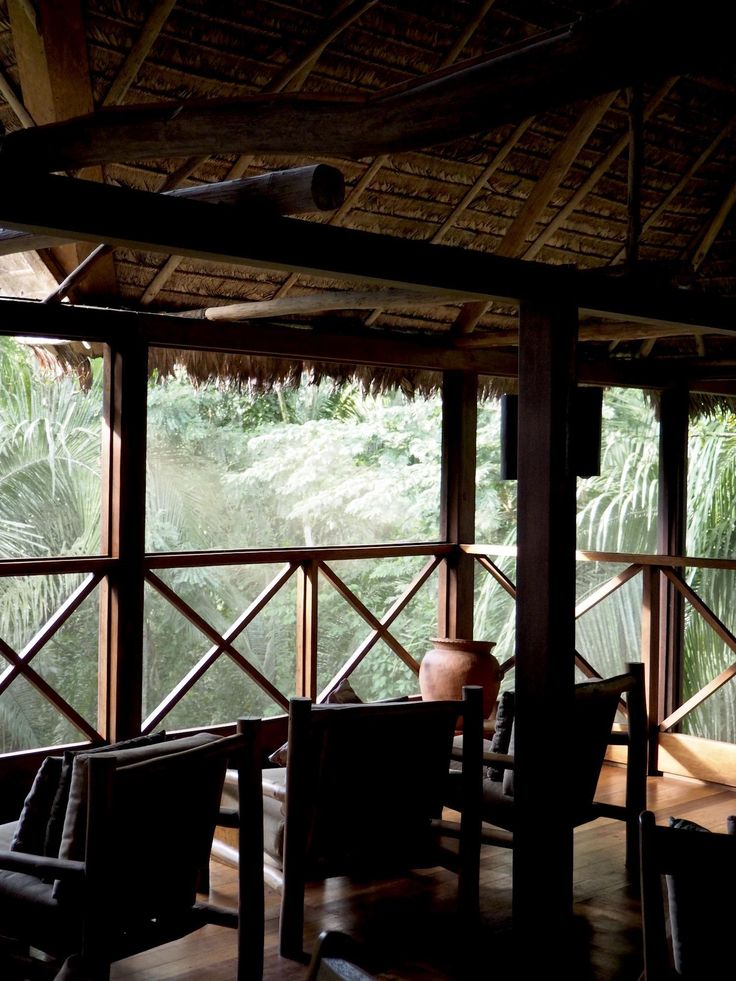 peru - what to do in Peru - flash anthology - amazon jungle
