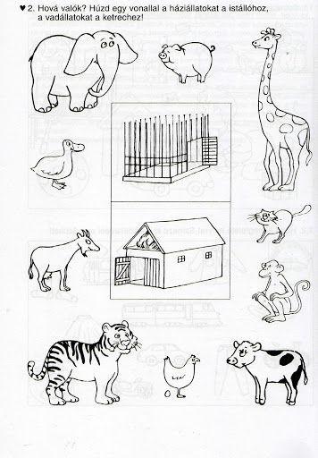 Zvířátka - kde bydlí