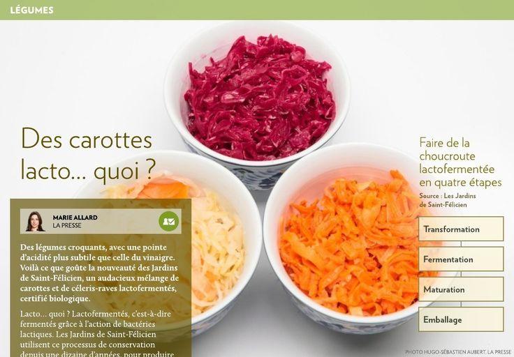 Des légumes croquants, avec une pointe d'acidité plus subtile que celle duvinaigre. Voilà ce que goûte la nouveauté des Jardins deSaint-Félicien, un audacieux mélange de carottes et de céleris-raves lactofermentés, certifiébiologique.-Lacto… quoi? Lactofermentés, c'est-à-dire fer