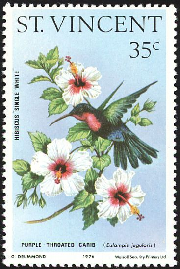 Purple-throated Carib stamps - mainly images - gallery format