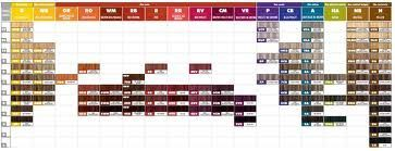 Paul Mitchell hair color chart: