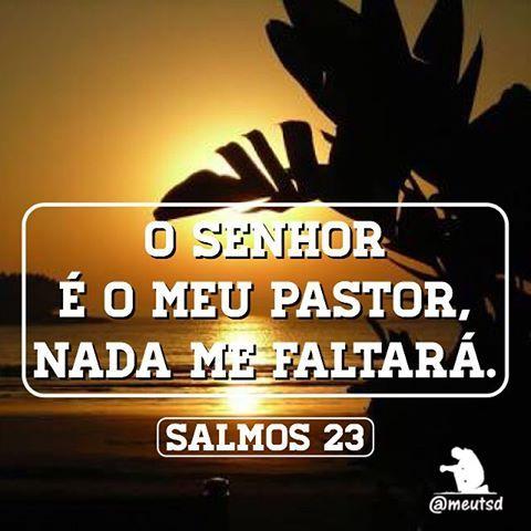 Salmos 23 1 O SENHOR é o meu pastor, nada me faltará. 2 Deitar-me faz em verdes pastos, guia-me mansamente a águas tranqüilas. 3 Refrigera a minha alma; guia-me pelas veredas da justiça, por amor do seu nome. 4 Ainda que eu andasse pelo vale da sombra da morte, não temeria mal algum, porque tu estás comigo; a tua vara e o teu cajado me consolam. 5 Preparas uma mesa perante mim na presença dos meus inimigos, unges a minha cabeça com óleo, o meu cálice transborda. 6 Certamente que a bondade e…