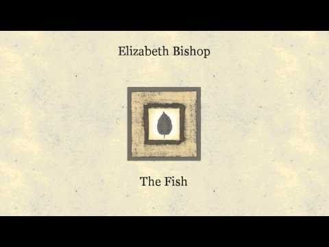 Elizabeth bishop the fish essay