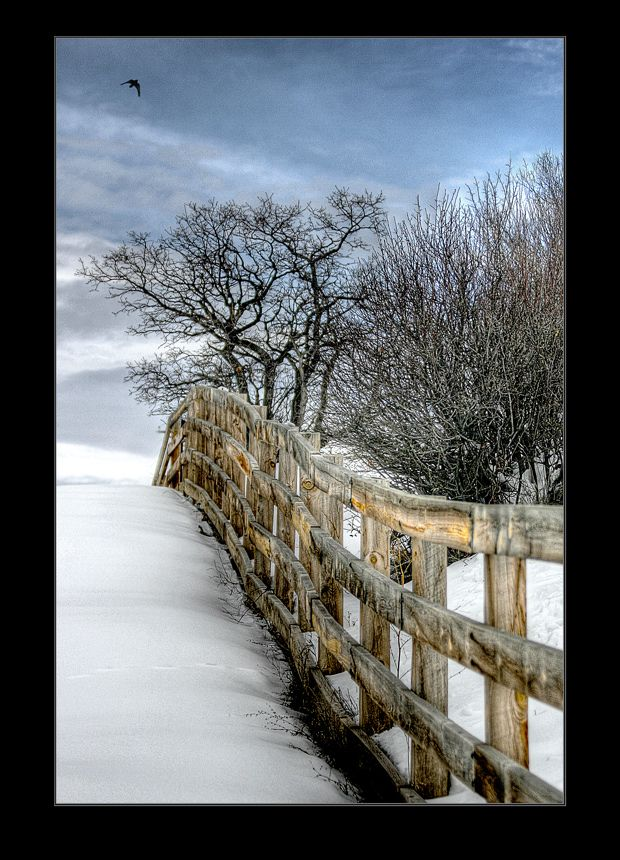 276 Best Old Fences Images On Pinterest Country Life Res Life And Country Fences