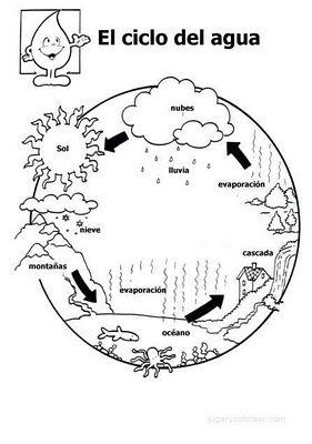 LUGAR DE ENCUENTRO: El ciclo del agua