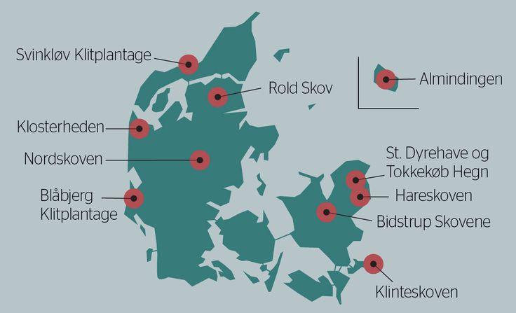 På tværs af landet har Naturstyrelsen udvalgt 10 områder, hvor du finder noget af bedste mountanbiking, De 10 Spir.