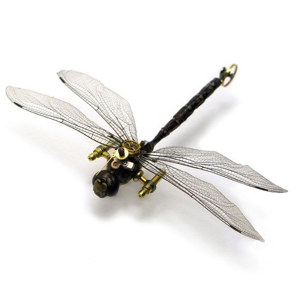 mike-libby-insect-lab-steampunk-insects3   Michael Bradley - Time Traveler