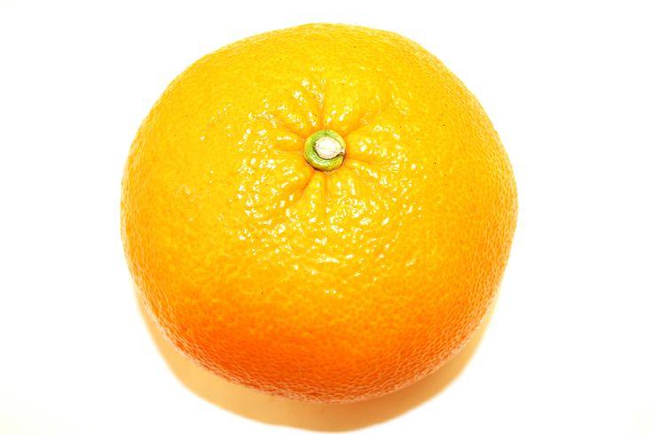 「伊予柑(いよかん)」 伊予柑は、明治19年に山口県阿武郡東分村(現萩市)の中村正路氏の園で発見された偶発実生の日本産です。親品種は明らかではありません。  収穫量は愛媛県が90%を占めています。  果汁が多くて酸味と甘味のバランスが良く、香りがとても良いです。