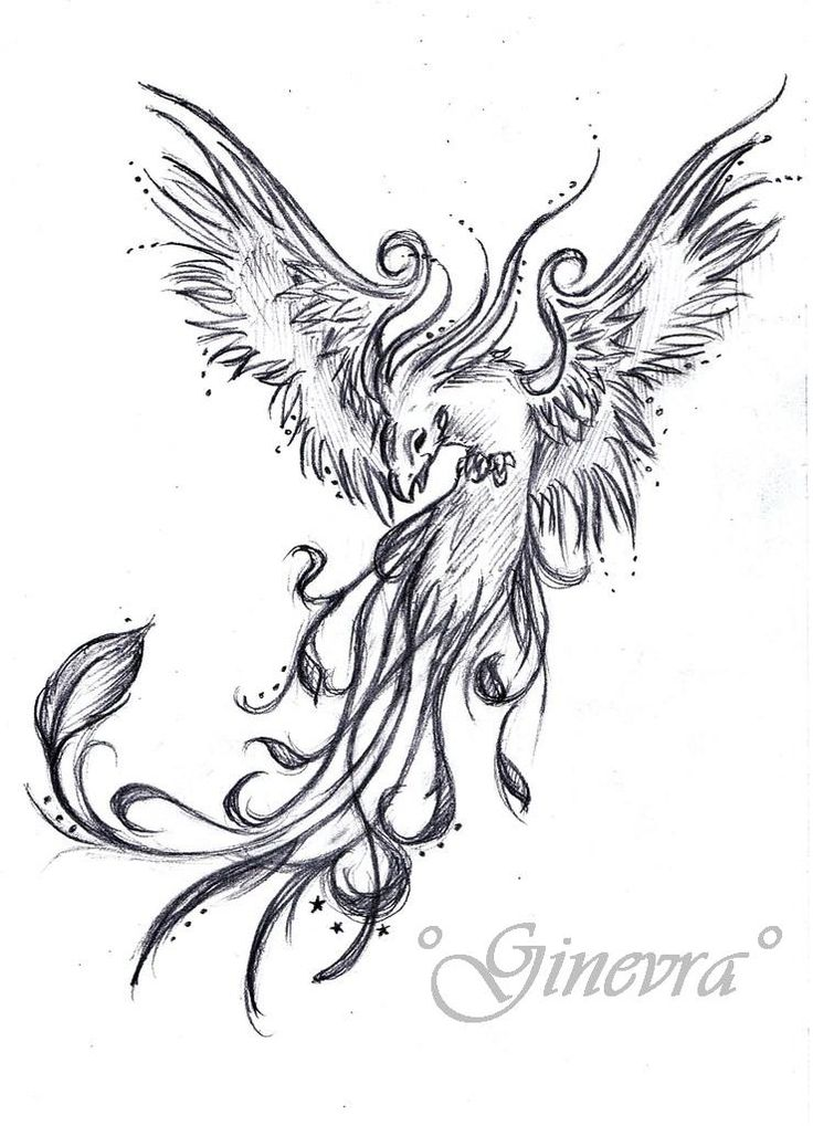 phoenix tattoo | phoenix tattoo phoenix tattoo 11 just tattoo phoenix tattoo