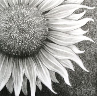 how to draw black and white shading ink