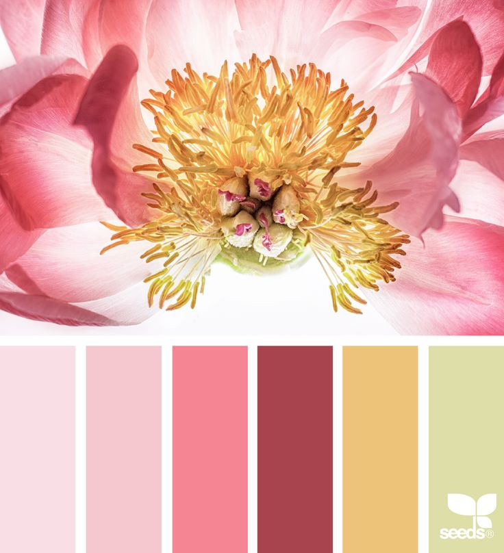 Flora Glow via @designseeds