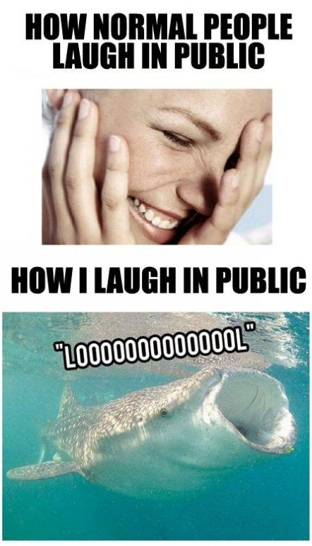 Me laughing EVERYWHERE!!!