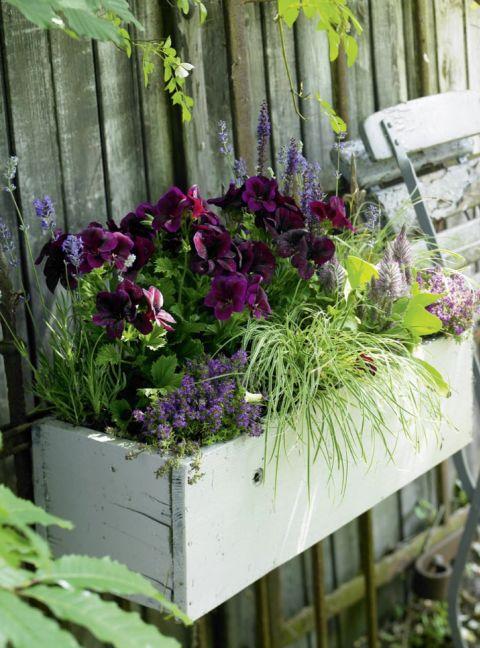 balkonk sten ideen f r alle jahreszeiten zum nachpflanzen balkonkasten mit hortensien. Black Bedroom Furniture Sets. Home Design Ideas