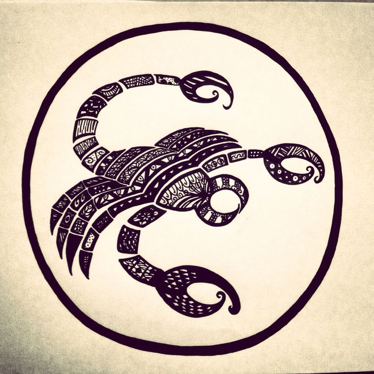 Zentangle Zodiac art - Scorpio,  (Made with a black posca pen)  #PLKdesign