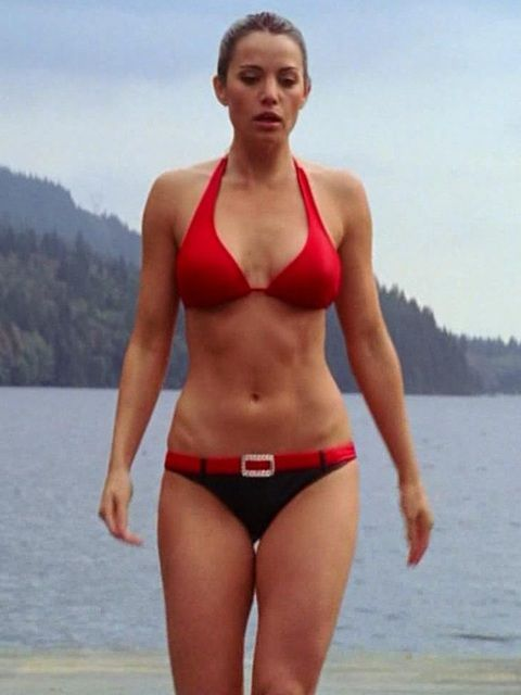 Touching Erica durance bikini really. agree