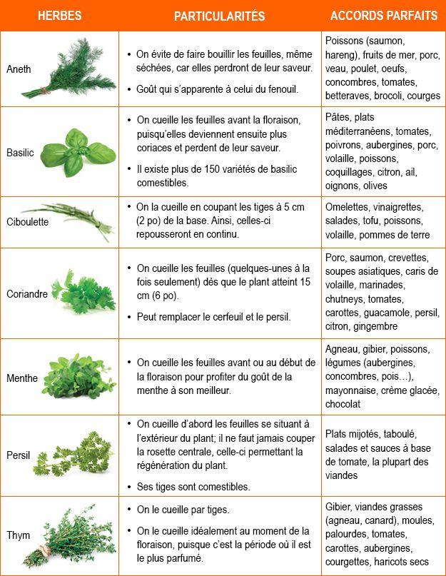 Mejores 53 im genes de epice en pinterest hierbas - Comment utiliser le romarin en cuisine ...