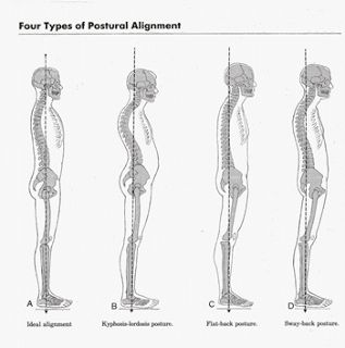 press postures and correct body alignment chloe