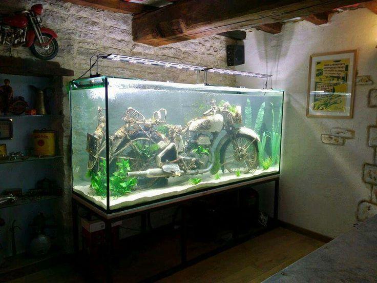 Top 20 Funny Layouts of Aquarium Tank but very beautiful e4e8b1917d8d3650ad065a1aab298a02  aquarium motorcycle