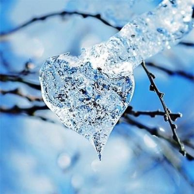 Winter heart through the trees. - from We Heart It   Heart ...   Hearts In Nature Winter